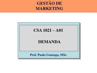 Prof. Paulo Gonzaga, MSc.