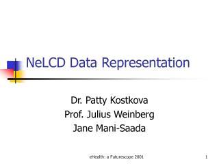 NeLCD Data Representation