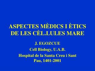 ASPECTES MÈDICS I ÈTICS DE LES CÈL.LULES MARE