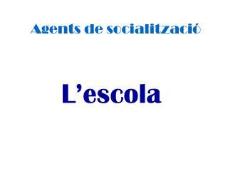 Agents de socialització