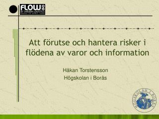 Att förutse och hantera risker i flödena av varor och information