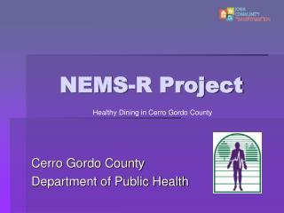 NEMS-R Project