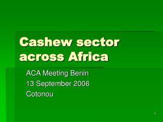 Cashew sector across Africa