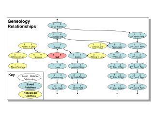 Geneology Relationships