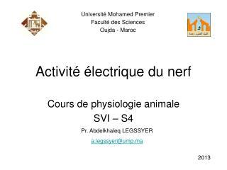 Activité électrique du nerf
