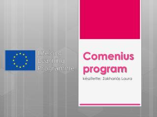Comenius program