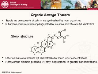 Organic Sewage Tracers