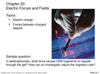 Electric charge Forces between charged objects