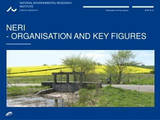 NERI - ORGANISATION AND KEY FIGURES