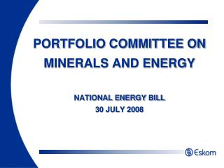 PORTFOLIO COMMITTEE ON MINERALS AND ENERGY NATIONAL ENERGY BILL 30 JULY 2008
