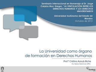 La  Universidad  como órgano  de  formación en Derechos  Humanos