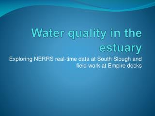 Water quality in the estuary
