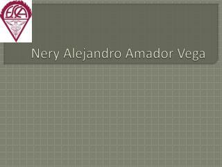 Nery Alejandro Amador Vega