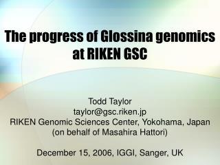 The progress of Glossina genomics at RIKEN GSC