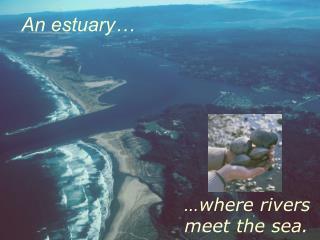 …where rivers meet the sea.