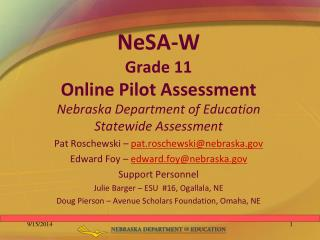 NeSA-W Grade 11  Online Pilot Assessment