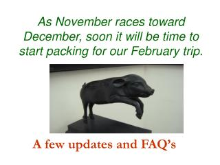 As November races toward December, soon it will be time to start packing for our February trip.