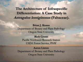 The Architecture of Infraspecific Differentiation: A Case Study in
