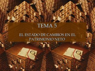 TEMA 5 EL ESTADO DE CAMBIOS EN EL PATRIMONIO NETO