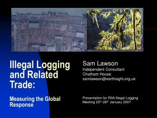 Illegal Logging and Related Trade:  Measuring the Global Response