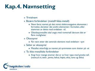 Kap.4. Navnsetting