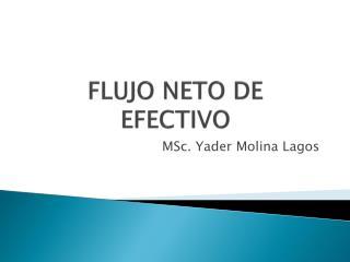 FLUJO NETO DE EFECTIVO