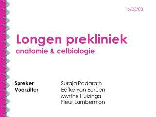 Longen prekliniek anatomie & celbiologie