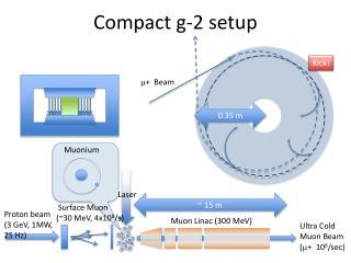 Compact g-2 setup