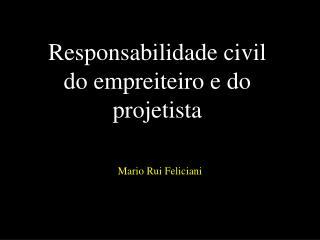 Responsabilidade civil do empreiteiro e do projetista