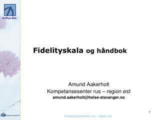 Fidelityskala  og håndbok