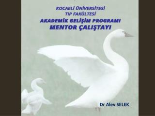 Dr  Alev SELEK