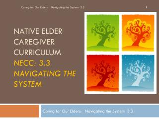 Native elder caregiver curriculum necc : 3.3 Navigating the system