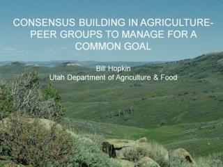 CONSENSUS BUILDING IN AGRICULTURE-PEER GROUPS TO MANAGE FOR A COMMON GOAL