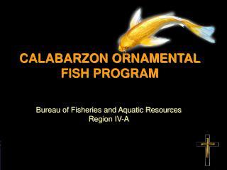 CALABARZON ORNAMENTAL FISH PROGRAM