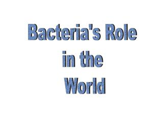 Bacteria's Role  in the  World