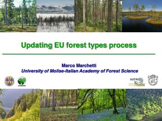 Updating  EU  forest types process