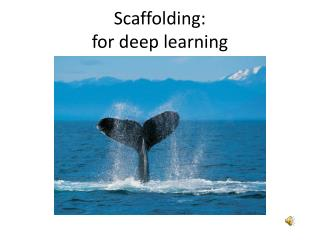 Scaffolding: for deep learning