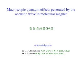 Macroscopic quantum effects generated by the acoustic wave in molecular magnet