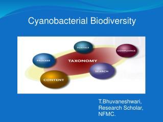 Cyanobacterial Biodiversity