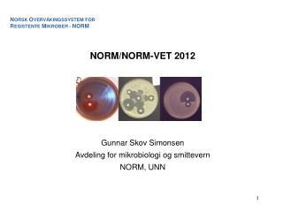 NORM/NORM-VET 2012 Gunnar Skov Simonsen Avdeling for mikrobiologi og smittevern NORM, UNN