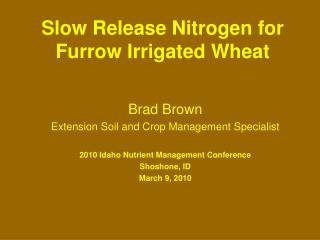 Slow Release Nitrogen for Furrow Irrigated Wheat
