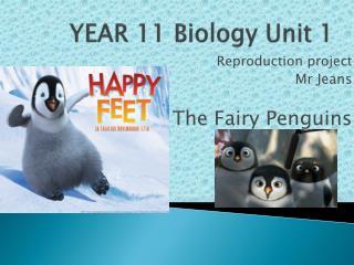 YEAR 11 Biology Unit 1