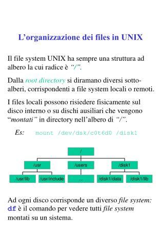 L'organizzazione dei files in UNIX