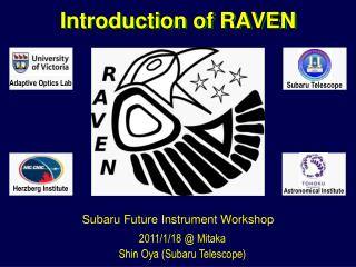 Introduction of RAVEN
