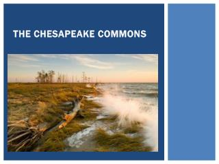 The Chesapeake Commons