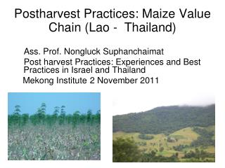 Postharvest Practices: Maize Value Chain (Lao -  Thailand)