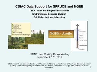 CDIAC Data Support for SPRUCE and NGEE Les A. Hook and Ranjeet Devarakonda