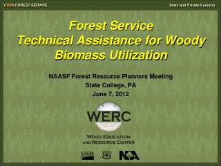 Forest Service  Technical Assistance for Woody Biomass Utilization