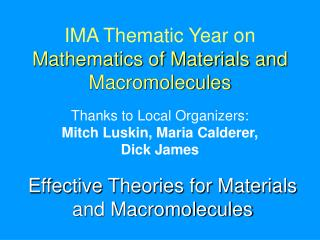 IMA Thematic Year on  Mathematics of Materials and Macromolecules
