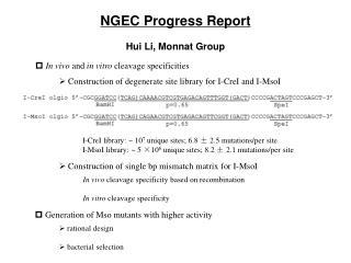 NGEC Progress Report Hui Li, Monnat Group